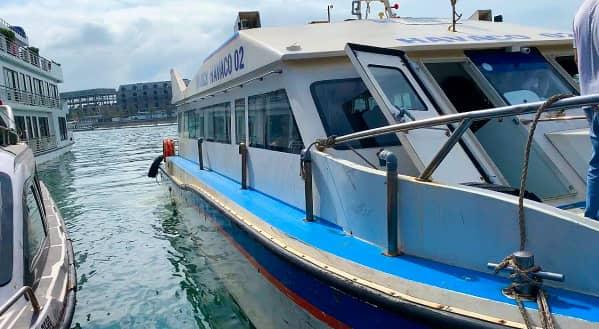 ハロン湾クルーズ 高速船